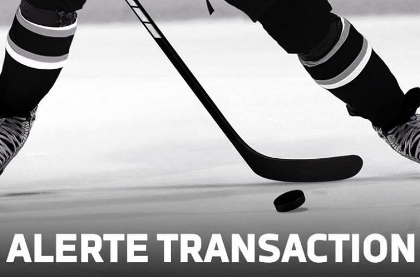 Alerte transaction dans la LNH!