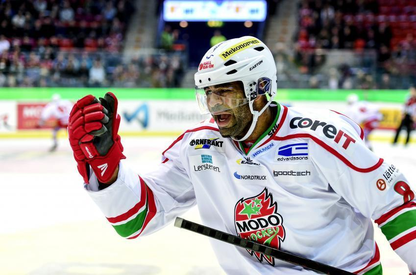 Donald Brashear signe dans la ligue Nord-Américaine de hockey