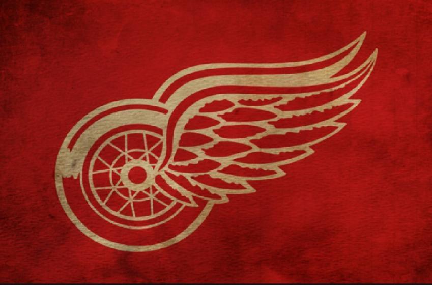 Le nouveau gardien des Red Wings a l'air d'un monstre!